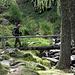 die Brücke über den Ri di Vacarisc