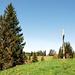 Blick von P.1164 mit Gipfelkreuz zum höchsten Punkt der Würzenegg 1173m.