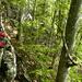 Vom Nuntlisboden (Forsthütte) auf schmalem Pfad zum Wandfuss