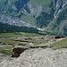 Blick zur anderen Seite auf Zermatt - vor dem Wald Tufteren, bis dort muss man noch hinunter