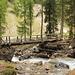 Holzbrücke über den Ova da Chaschauna bei Punt da Val da Scrigns