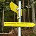 Über den Schlangenweg geht es aufs Karl-Ludwig-Haus
