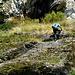 Hunderte Trittbügel am flachen  Einstieg -der 'Wasserplatte' in die Felswand - zuviel Stahl.