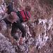 Letzte Kletterstellen vor dem Gipfel