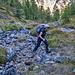 Bachüberquerung an der Waldgrenze