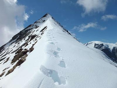 Der Vorgipfel Punkt 3368 ist für sich schon ein sehr schöner Berg. Ein rasch verwächtender Grat für hinauf.