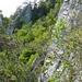 Jura-Kletterei - wild  & romantisch