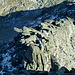 Die großen Granitplatten auf dem unteren Ostgrat wirken von weitem einheitlich ausgerichtet.