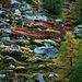 Herbstliche Farbenvielfalt auf der Täschalp