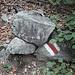 <b>A 650 m di quota raggiungo il sentiero segnalato con vernice bianca – rosso – bianca, che sale da Intragna. </b>