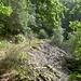 Das erste Felsenmeer des Tages