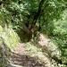 Der letzte Wegabschnitt vor der Abtei Neuburg.