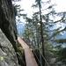 Stege, um einen Felsrutsch zu überqueren