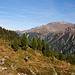 Abstieg wieder über den schönen Wanderpfad
