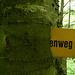 """Es gibt """"En Weg""""! En Guete, Baum!"""