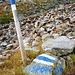 Der Weg von der Cap. Campo Tencia zur Cap. Alpe Sponda ist bis zum Passo di Giaccione blau weiss markiert