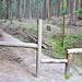 Hier zweigt der deutliche Weg zur Rübezahlstiege ab, aber ohne Hinweisschild/-markierung.