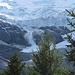 Immer wieder kalbt der Gletscher