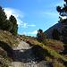 breiter Aufstiegsweg zur Hütte, dieser Weg ist auch als Bikeroute ausgewiesen<br /><br />