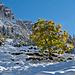 Aufstieg zum Geisserhüttli. Kontrast Herbst - Winter