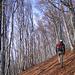 Durch den Wald (Foto [U sglider])