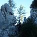 Inzwischen haben wir die Höhe des Halterkogels erreicht, wo interessante Felsformationen am Weg liegen.