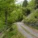 Tratto su strada sterrata per raggiungere il vero sentiero