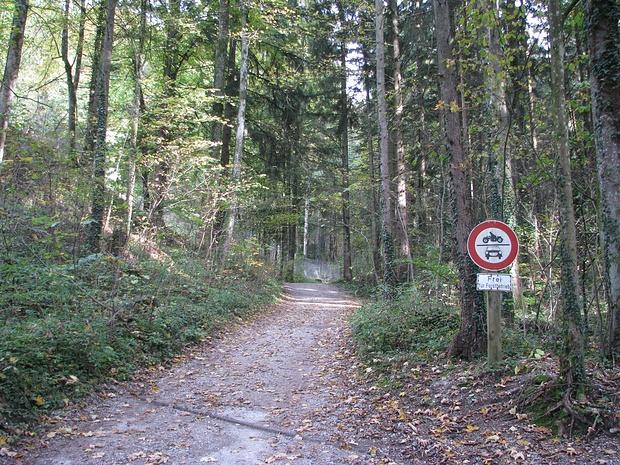 Verlängerung der Burgstraße zum eingezäunten Anwesen (im Bildhintergrund links)