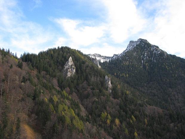 Weiterweg im Wald über Luchsfallwand zum Hochlerch