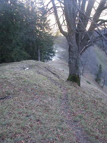 Rückwärtsblick am Weg entlang des Grats zum Hochlerch