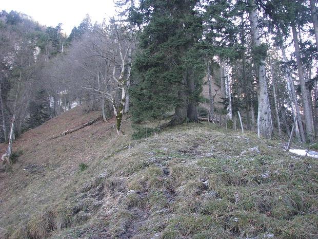 Pfad am Grat entlang Richtung Hochlerch