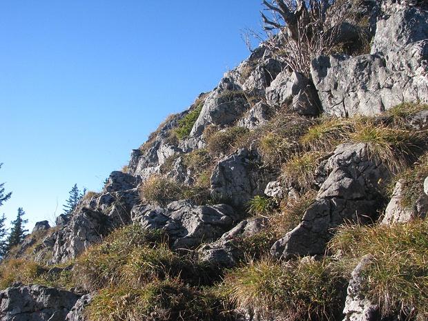 wegloser Abstieg von der Zwölferspitz Richtung Moarbichl