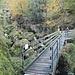 Brücke über die Rigiaa bewacht vom armen Teufel<br />«Betreten auf eigenes Risiko!<br />Bei Hochwasser betreten verboten!»