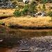 Alpine Moorlandschaft auf der Hochebene beim Collet de Comapedrosa.