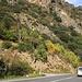 Durch abwechslungsreiche Berglandschaft fuhren wir unter Zeitdruck nach dem Andorra-Abentheuer zurück nach Barcelona.