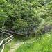 Ponticello appena partiti: c'è un sentiero che porta alla frazione Selve (Gordevio)