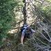 Und am letzten Felszacken war noch ein botanischer Abstecher notwendig.