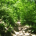 ten-Brink-Weg führt unter der Felswand hindurch