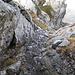 Canalino da discendere sul versante Nord della cresta W per raggiungere quest'ultima cresta