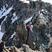 Kurze Kletterstelle im Grat.
