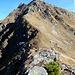 dieses buschige Tännchen wächst - am Grat - auf 2300 Metern!