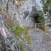 Während die Karwendelbahn am Nordhang hinaufführt, windet sich unser Wanderweg in rund vier Spitzkehren nordwestlich zur Bergstation hoch, v.a. im Wald und durch einige in den Fels gearbeitete Tunnels.