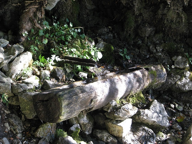 Wasserstelle am Normalweg