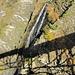 die Brücke wirft lange Schatten auf den Wasserfall