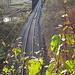 Bahnlinie durch das Donautal