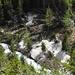 Kraft der Natur: Eine Lawine liess - wohlvermerkt am Gegenhang - die Bäume wie Streichhölzer knicken