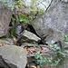 <br />Das ist die erste 'Treppe' auf dem Weg zu den Heiden - weiter oben kommt dann noch eine zweite.<br /><br /><br /><br />(We Are Climbing Jacob's Ladder - The Lewis Family)<br />[http://www.youtube.com/watch?v=wr1kv7XaHLQ]<br /><br />