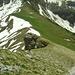 Aufstieg oberhalb der Sinsgäuer Schonegg