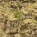<br />Vor dem Aufstieg zeichnete ich in meiner Vorstellung <br />eine Route auf diese Felspartie und dachte, <br />das könnte schwierig werden.