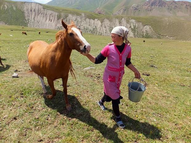 Pferdemilch ist hier eine Delikatesse...wir dagegen fanden sie *bäääääh*